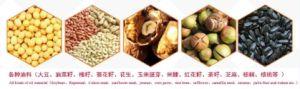ISO9001 10-5000tpdのピーナツまたはヒマワリまたはSeasameまたは菜種の前処理および製版装置