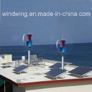 ホーム使用のための600W Maglevの風車の発電機そして太陽電池パネル