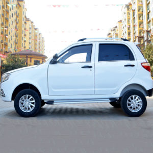 Nueva Energía High-Power Four-Wheeled coche SUV