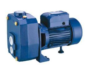 세륨을%s 가진 원심 펌프 (DP-505A/750A)는 승인했다
