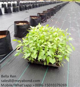 Alfombra de hierba para cubiertas de invernadero