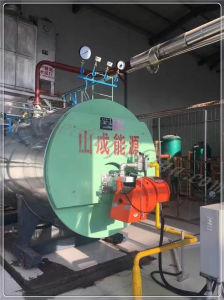 Gas di olio a petrolio della caldaia a vapore dell'alta benzina efficiente di 91%