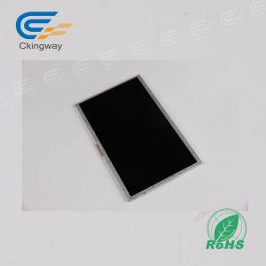 10.1 de  Module van 250 CD/M2 LCD