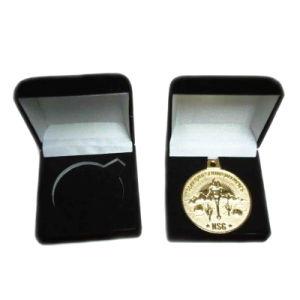 Fabrik-Preis-Metalldecklack-Münzen mit Samt-Kasten für Andenken (108)