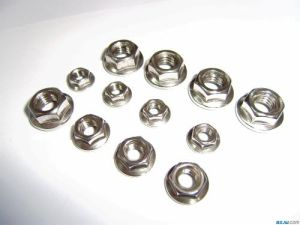 Largement utilisé en acier inoxydable de la soudure de l'écrou à embase hexagonale de /l'écrou de soudure par points