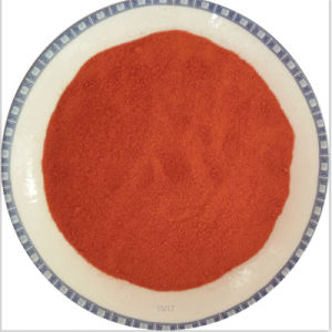 Bestrahltes Paprika-Puder-Sudan-Rot frei