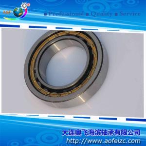 Qualidade competitiva rolete cilíndrico Rolamento Ge NU1064M Rolamento de polímero