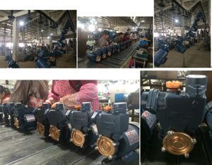 Gp-125 0,25 квт/0.3HP водяного насоса 220 В/110 В для Ирака на рынок