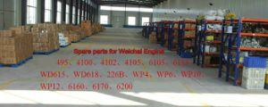 Elke Soorten Vervangstukken voor Motor Weichai
