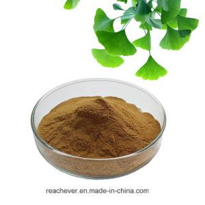 24% Lactones Flavones 6% Ginkgo Biloba Extract