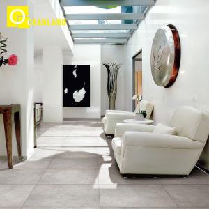 De nieuwe Aankomst van Eenvoudig Ontwerp verglaasde de Ceramische Tegel van de Muur