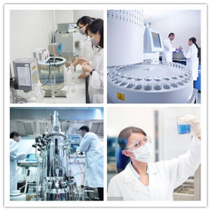 Alimentação de fábrica Rebaudioside uma agricultura 98%, 99% CAS 58543-16-1
