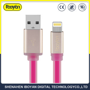 携帯電話ケーブルを満たすデータ2つのFTの電光USB