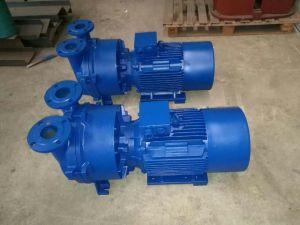 液体の(水)リングの真空ポンプ(2BE SK 2SK 2BV)、ルートポンプ、空気ポンプ、オイルより少なくのピストン真空ポンプ、ベーンの回転式ベーンの真空ポンプを滑らせるNash