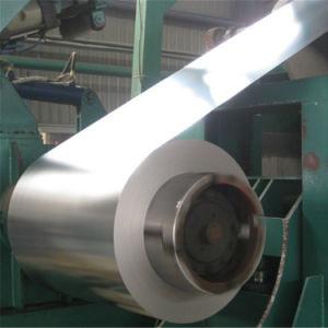 Prezzo di alta qualità di fabbricazione il migliore ha galvanizzato la bobina d'acciaio