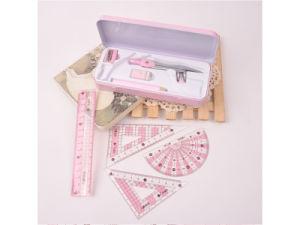 금속 나침의는 그리기 도구 나침의가 주문을 받아서 만들어질 수 있는 연필 통치자를 가진 놓인 8 피스 세트를 놓는다