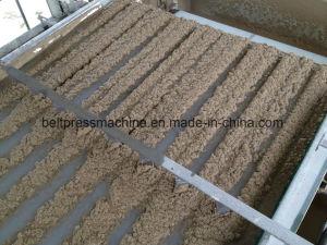 Rio de correia de desidratação de lamas