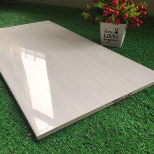 Керамические плитки на стене 3D-струйной хороший дизайн дома (300*600 мм)