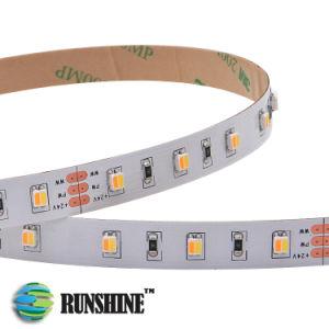 Indicatore luminoso di striscia doppio indirizzabile del nastro di bianco LED di Dimmable in Ww e Pw
