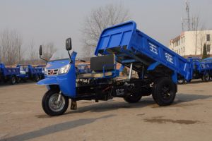 Chinese Diesel Waw Driewieler met Zonnescherm voor Verkoop