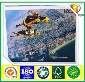 Karton SBS des erstklassigen Qualitätskastens