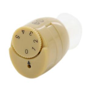 세륨 & FDA 증폭기 소리 헬스케어 제품 소형 귀 훅 보청기