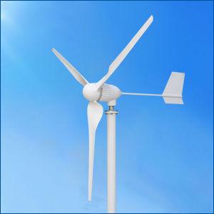 代替エネルギーのホーム使用のための水平の軸線1kw 24V/48Vの風Genrator