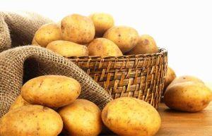 Prix de gros de pommes de terre Pommes de terre fraîches pour l'exportation