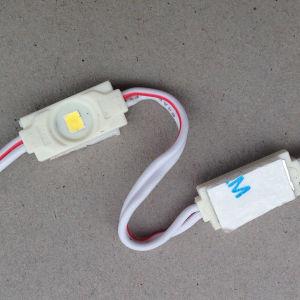 Cassa di visualizzazione chiara del LED 0.3W per le lettere