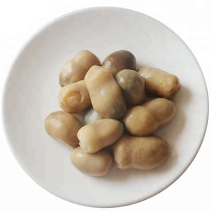 Fungo di paglia del fungo di alta qualità dalla Cina