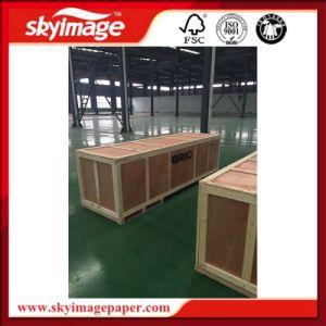 stampante solvibile eccellente Cina Oric Eco3202 di Digitahi di ampio formato di 3.2m