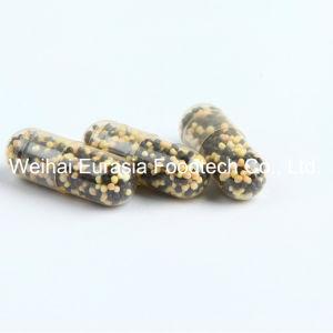 Soem-diätetische Ergänzung EisenGlycinate für Eisen-Mangel