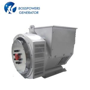 De Generator van de Dynamo van het Type 40kVA van Stamford 50Hz 220V