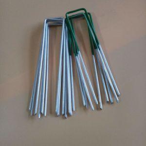 緑のUタイプ草の釘に塗る高品質