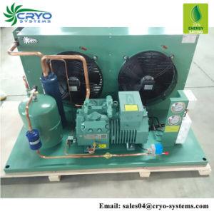 30A Unidade de condensação do compressor Bitzer HP para soprar a unidade de condensação no exterior congelador