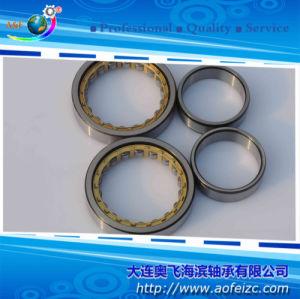 Fabricante do rolamento de roletes cilíndricos (NU1008M)