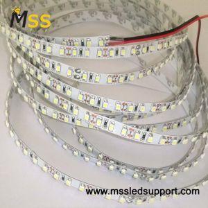 3528 PI33 Homologação CE a luz de LED