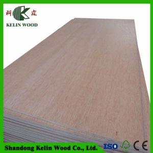 Le peuplier/Eucalyptus/contreplaqué de bois de feuillus de noyau commercial