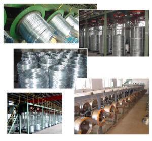 Collegare della lega di alluminio dello zinco/collegare di Galfan per la maglia di Gabion