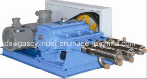 Grandi pompe a pistone di pressione di media e di flusso