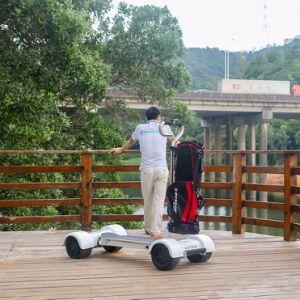 ゴルフコースのスケートボード60V 20.8ah 1000Wのゴルフボードのスクーター