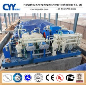 Het Vullende Systeem van de hoogstaande en Lage Prijs Cyylc68 L CNG