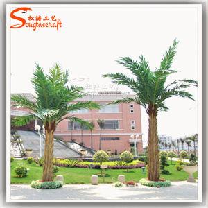 China Fornecedor Árvore Artificial Palmeira Palmeira de Washington