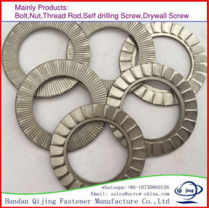 Rondelle plate de métal DIN125/la rondelle de blocage/Rondelles à ressort pour les fixations