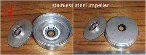 Pompa buona profonda sommergibile della ventola 6sp dell'acciaio inossidabile di AISI 304
