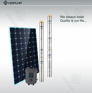pompe submersible solaire de levage principal de 80m avec le panneau solaire