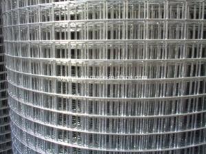 Hot-Dipped électrique et le fil soudé en acier inoxydable galvanisé maille d'Escrime