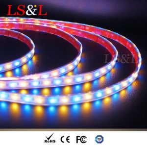 RGB+желтая теплый свет веревки лампа водонепроницаемый полосы света