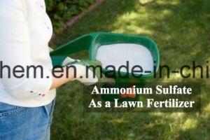 Sulfaat het van uitstekende kwaliteit van het Ammonium van de Rang van de Meststof