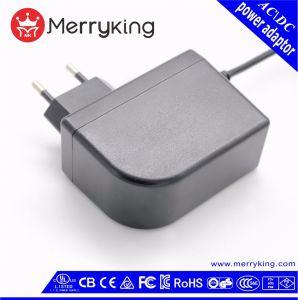 24W Ficha UE de alta qualidade de impressão de logotipo AC Adaptador de alimentação DC